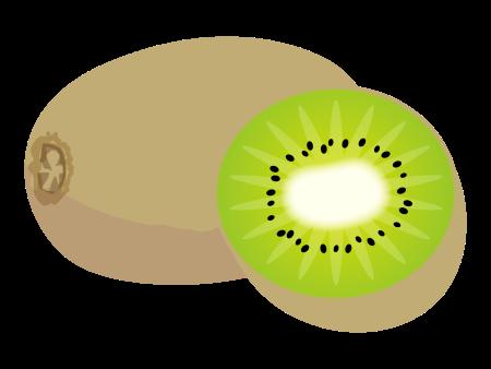 キウイフルーツのイラスト画像